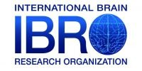 INTERNATIONAL BRAIN RESEARCH ORGANIZATION